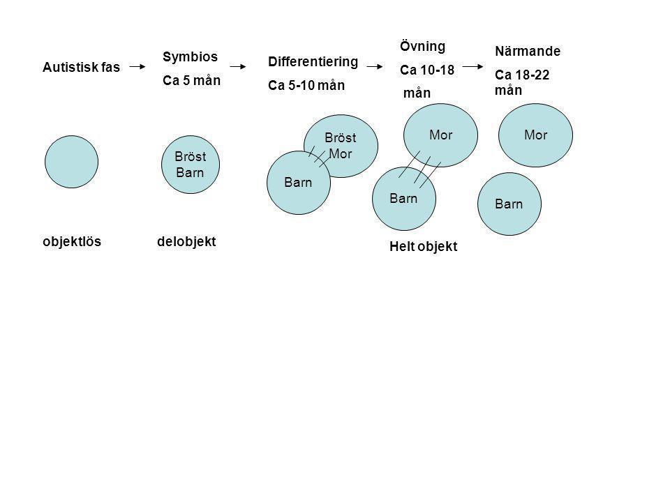 Autistisk fas objektlös Symbios Ca 5 mån Bröst Barn delobjekt Differentiering Ca 5-10 mån Bröst Mor Barn Övning Ca 10-18 mån Mor Barn Helt objekt Närm