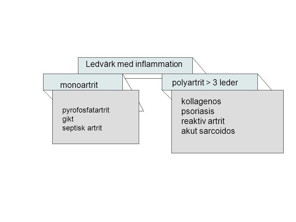 Ledvärk med inflammation monoartrit pyrofosfatartrit gikt septisk artrit polyartrit > 3 leder kollagenos psoriasis reaktiv artrit akut sarcoidos