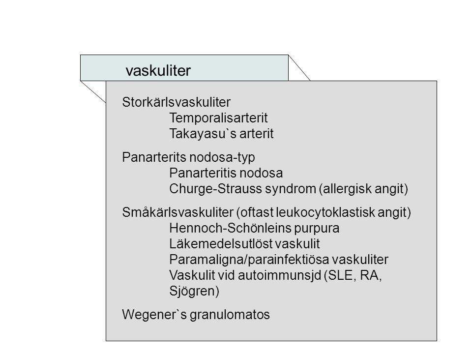 vaskuliter Storkärlsvaskuliter Temporalisarterit Takayasu`s arterit Panarterits nodosa-typ Panarteritis nodosa Churge-Strauss syndrom (allergisk angit
