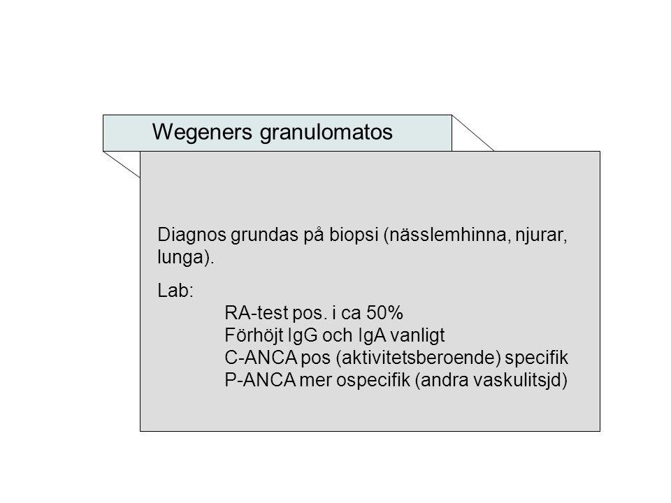 Wegeners granulomatos Diagnos grundas på biopsi (nässlemhinna, njurar, lunga). Lab: RA-test pos. i ca 50% Förhöjt IgG och IgA vanligt C-ANCA pos (akti