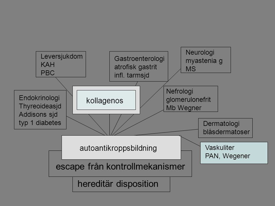 Autoimmun sjukdom hereditär disposition escape från kontrollmekanismer autoantikroppsbildning Endokrinologi Thyreoideasjd Addisons sjd typ 1 diabetes