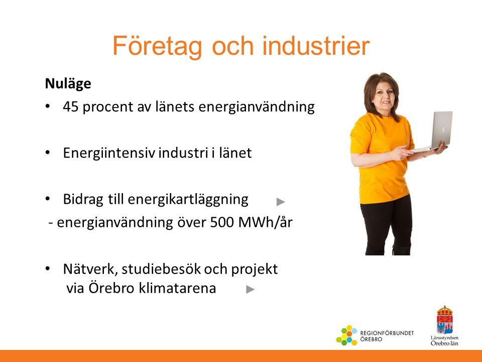 Företag och industrier Nuläge 45 procent av länets energianvändning Energiintensiv industri i länet Bidrag till energikartläggning - energianvändning