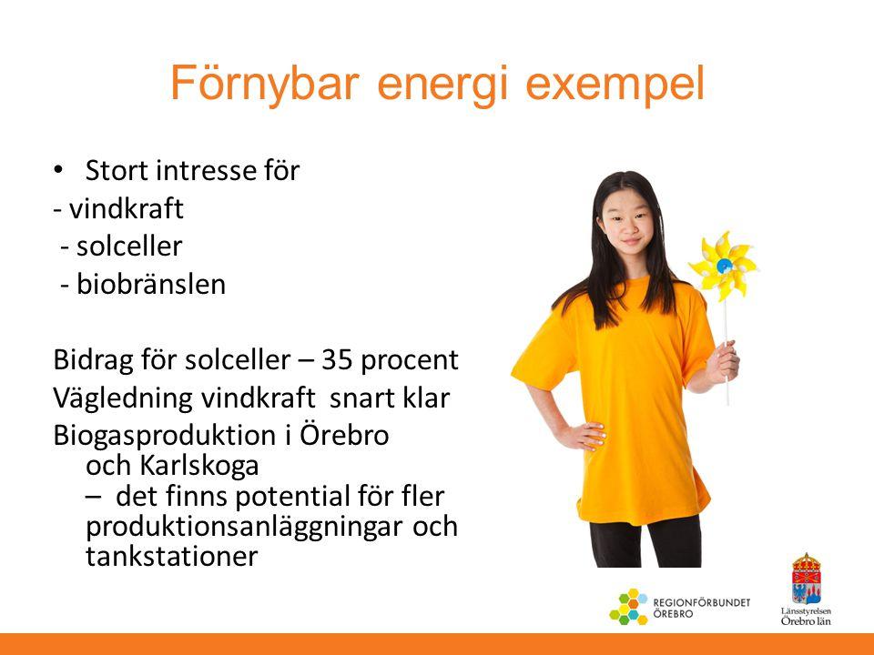 Förnybar energi exempel Stort intresse för - vindkraft - solceller - biobränslen Bidrag för solceller – 35 procent Vägledning vindkraft snart klar Bio