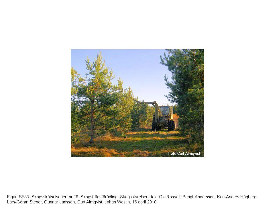 Figur SF33. Skogsskötselserien nr 19, Skogsträdsförädling, Skogsstyrelsen, text:Ola Rosvall, Bengt Andersson, Karl-Anders Högberg, Lars-Göran Stener,