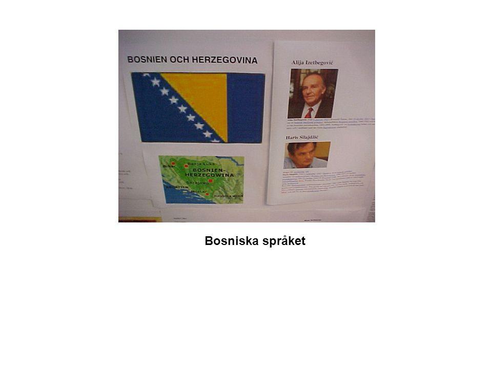 Bosniska språket