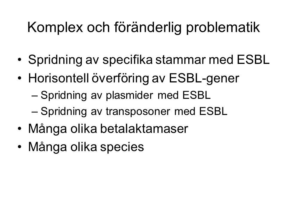 Komplex och föränderlig problematik Spridning av specifika stammar med ESBL Horisontell överföring av ESBL-gener –Spridning av plasmider med ESBL –Spr