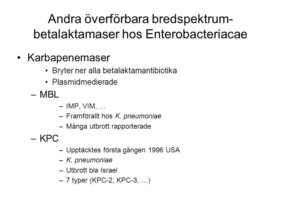 Andra överförbara bredspektrum- betalaktamaser hos Enterobacteriacae Karbapenemaser Bryter ner alla betalaktamantibiotika Plasmidmedierade –MBL –IMP, VIM, … –Framförallt hos K.