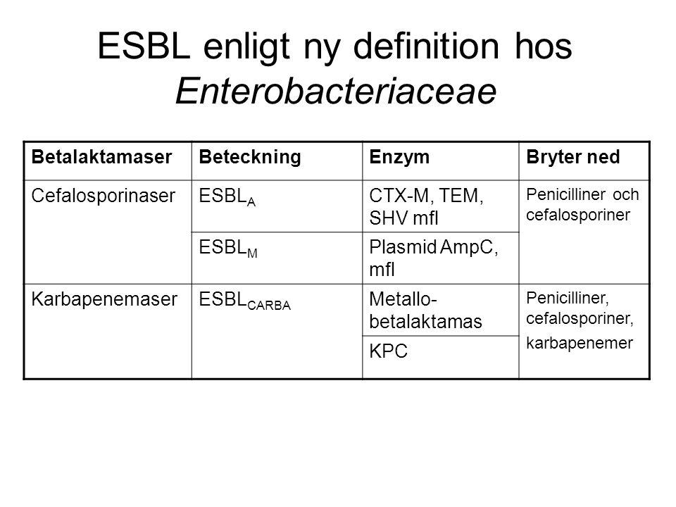 ESBL enligt ny definition hos Enterobacteriaceae BetalaktamaserBeteckningEnzymBryter ned CefalosporinaserESBL A CTX-M, TEM, SHV mfl Penicilliner och cefalosporiner ESBL M Plasmid AmpC, mfl KarbapenemaserESBL CARBA Metallo- betalaktamas Penicilliner, cefalosporiner, karbapenemer KPC