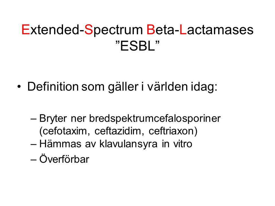 Extended-Spectrum Beta-Lactamases ESBL Definition som gäller i världen idag: –Bryter ner bredspektrumcefalosporiner (cefotaxim, ceftazidim, ceftriaxon) –Hämmas av klavulansyra in vitro –Överförbar