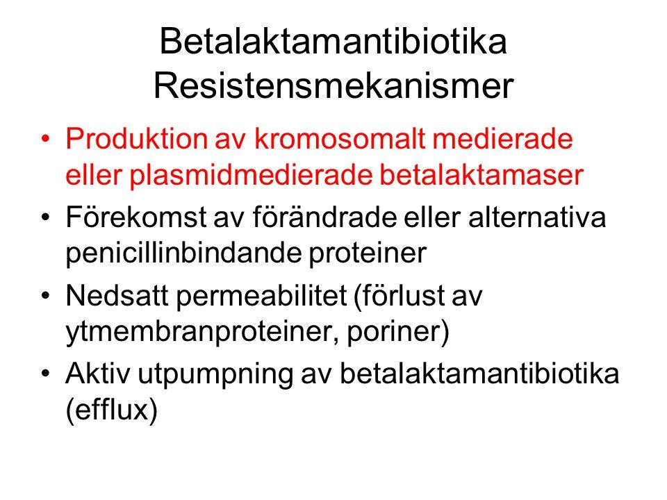 Betalaktamantibiotika Resistensmekanismer Produktion av kromosomalt medierade eller plasmidmedierade betalaktamaser Förekomst av förändrade eller alte