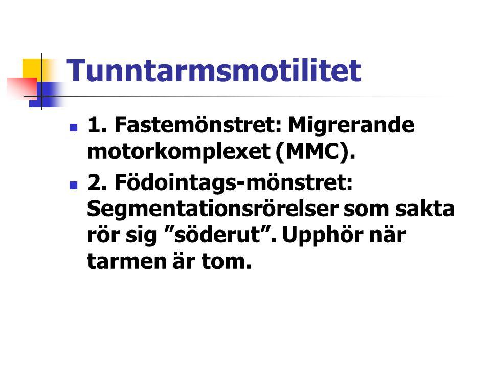 """Tunntarmsmotilitet 1. Fastemönstret: Migrerande motorkomplexet (MMC). 2. Födointags-mönstret: Segmentationsrörelser som sakta rör sig """"söderut"""". Upphö"""