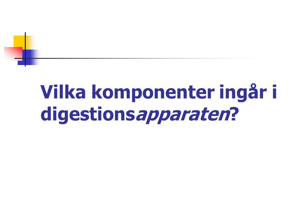 Vilka komponenter ingår i digestionsapparaten?