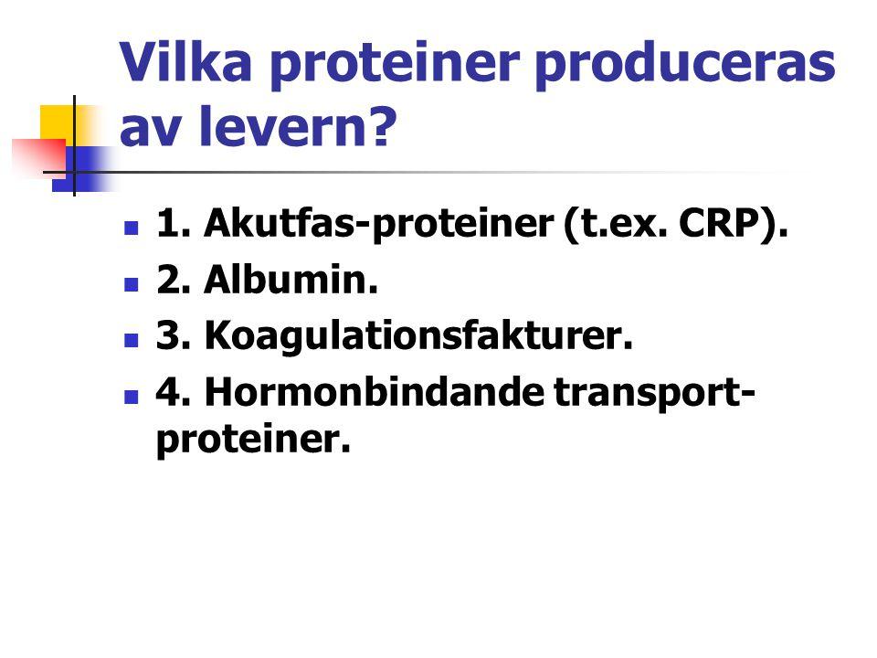 Vilka proteiner produceras av levern? 1. Akutfas-proteiner (t.ex. CRP). 2. Albumin. 3. Koagulationsfakturer. 4. Hormonbindande transport- proteiner.