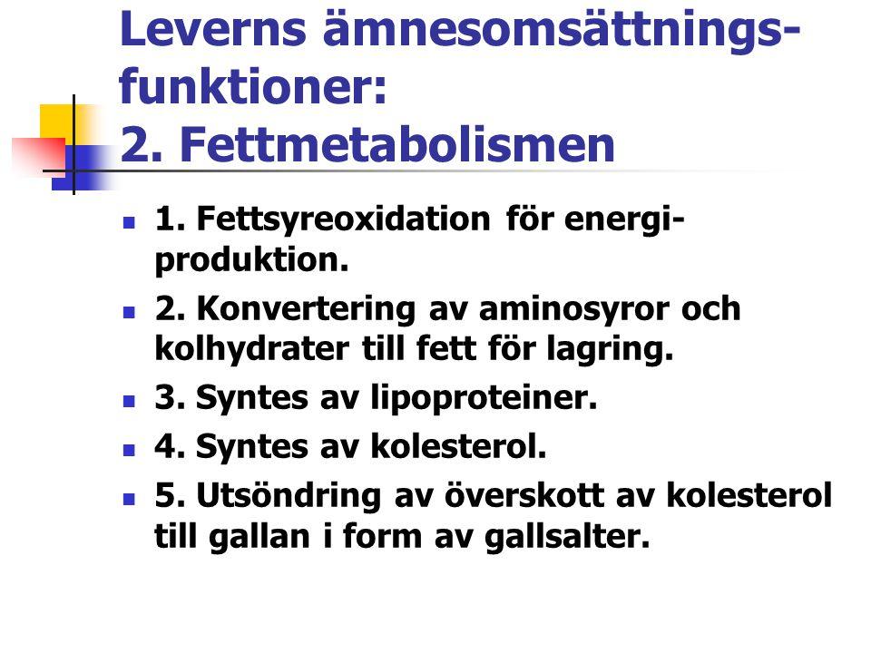 Leverns ämnesomsättnings- funktioner: 2. Fettmetabolismen 1. Fettsyreoxidation för energi- produktion. 2. Konvertering av aminosyror och kolhydrater t