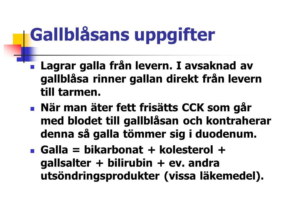 Gallblåsans uppgifter Lagrar galla från levern. I avsaknad av gallblåsa rinner gallan direkt från levern till tarmen. När man äter fett frisätts CCK s