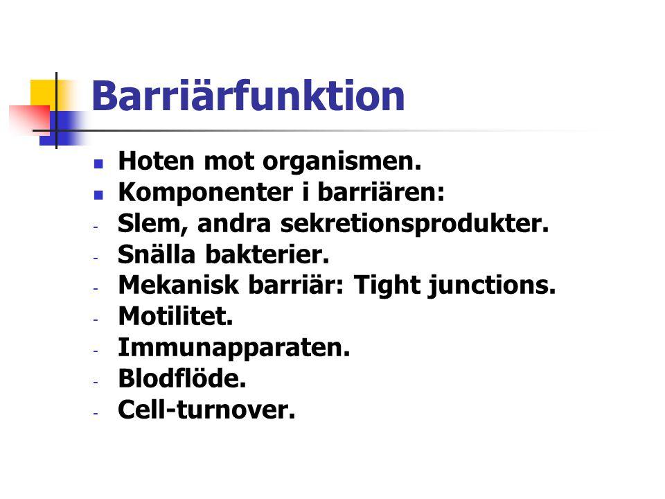 Barriärfunktion Hoten mot organismen. Komponenter i barriären: - Slem, andra sekretionsprodukter. - Snälla bakterier. - Mekanisk barriär: Tight juncti