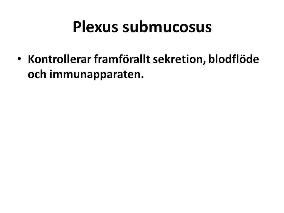 Plexus submucosus Kontrollerar framförallt sekretion, blodflöde och immunapparaten.