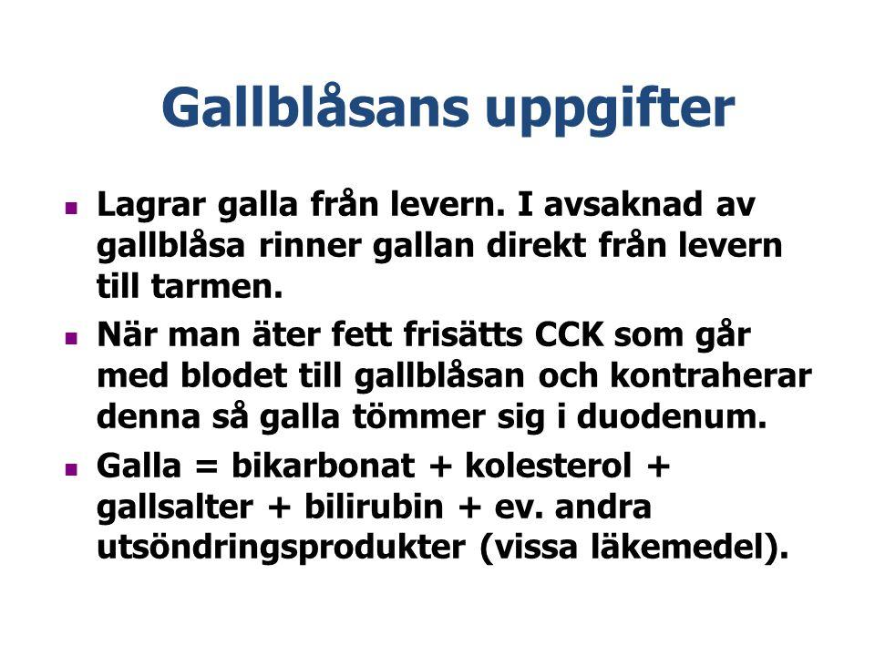 Gallblåsans uppgifter Lagrar galla från levern.