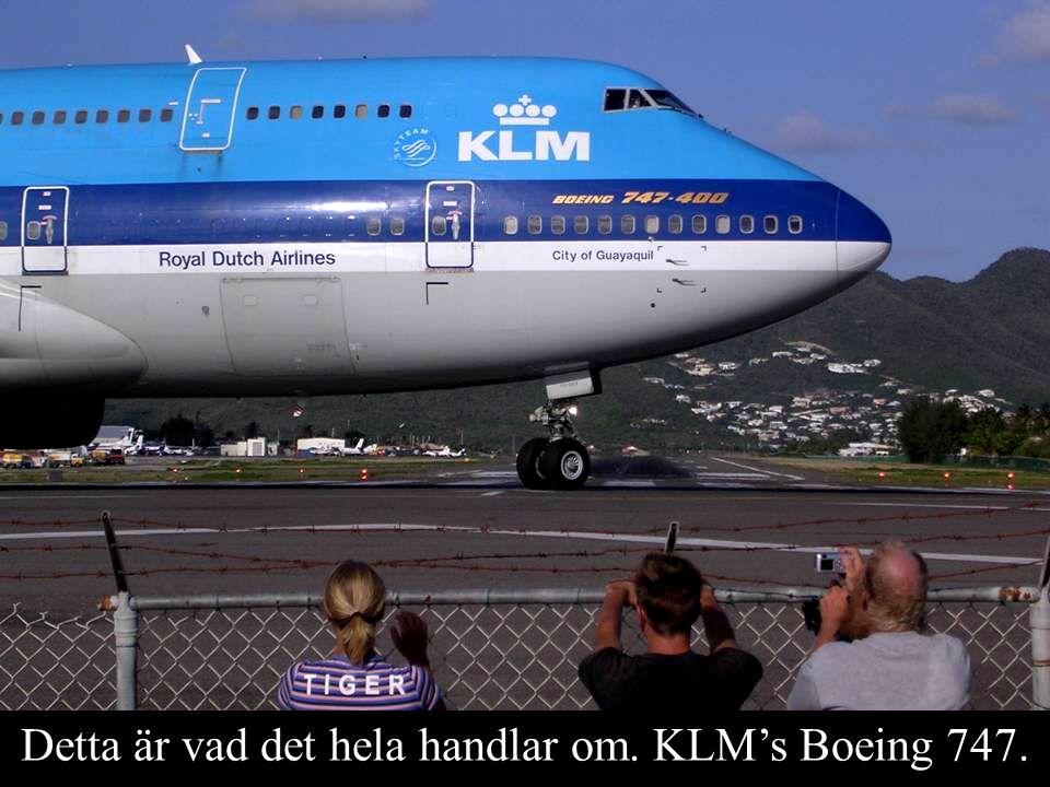 Detta är vad det hela handlar om. KLM's Boeing 747.
