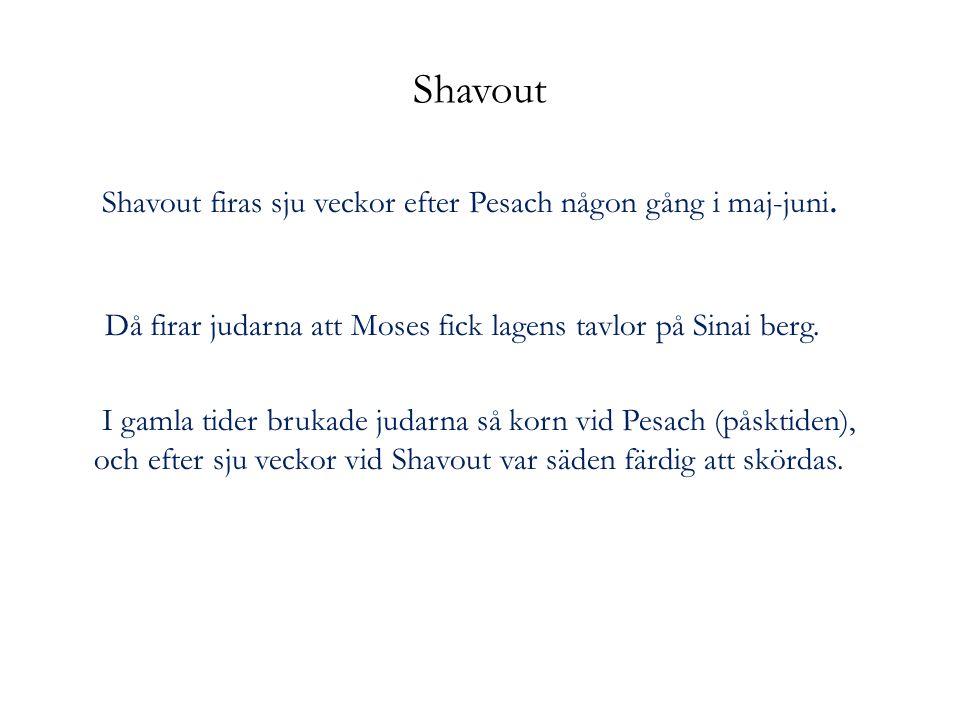 Shavout Shavout firas sju veckor efter Pesach någon gång i maj-juni. Då firar judarna att Moses fick lagens tavlor på Sinai berg. I gamla tider brukad