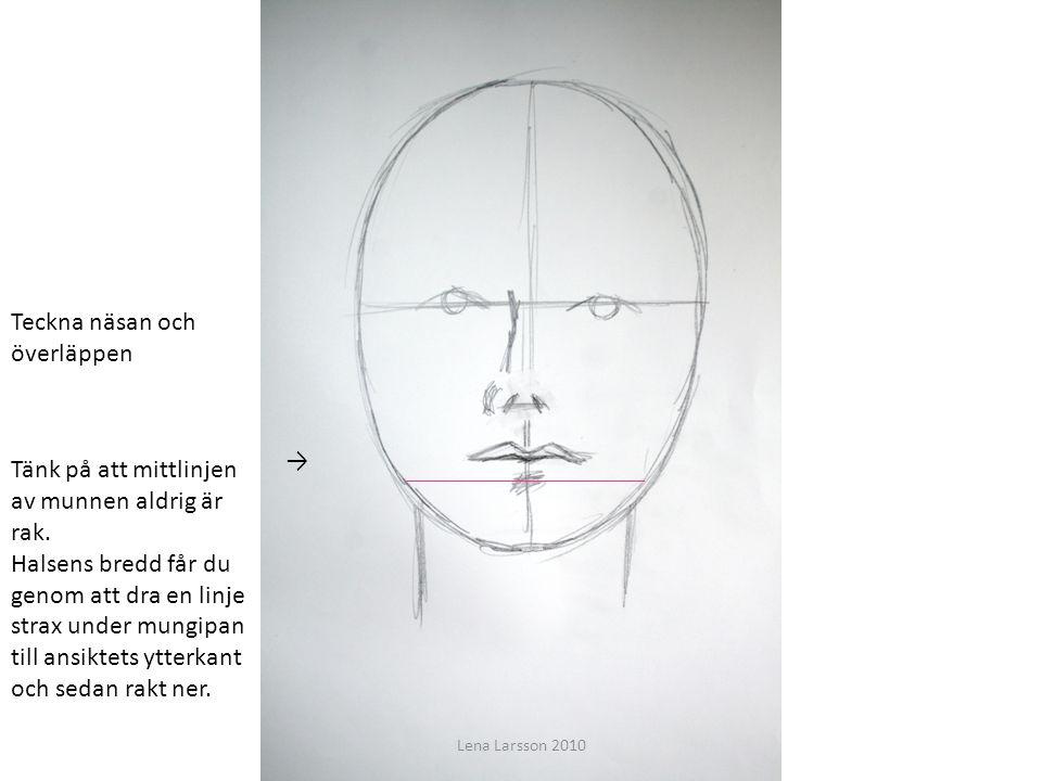 Teckna näsan och överläppen Tänk på att mittlinjen av munnen aldrig är rak. Halsens bredd får du genom att dra en linje strax under mungipan till ansi