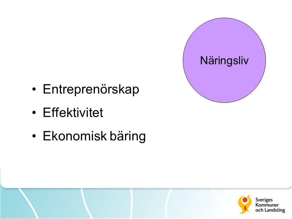 Näringsliv Entreprenörskap Effektivitet Ekonomisk bäring