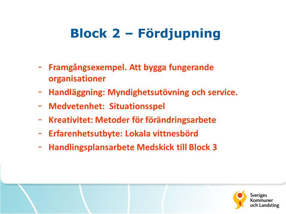 Block 2 – Fördjupning - Framgångsexempel. Att bygga fungerande organisationer - Handläggning: Myndighetsutövning och service. - Medvetenhet: Situation