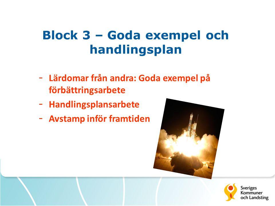 Block 3 – Goda exempel och handlingsplan - Lärdomar från andra: Goda exempel på förbättringsarbete - Handlingsplansarbete - Avstamp inför framtiden