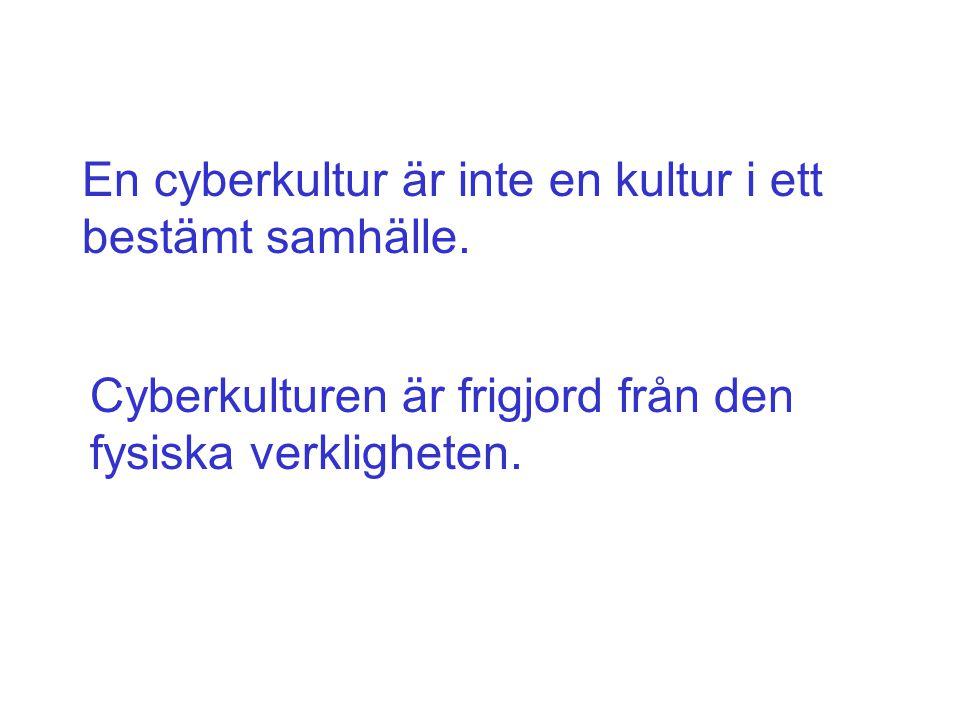 En cyberkultur är inte en kultur i ett bestämt samhälle. Cyberkulturen är frigjord från den fysiska verkligheten.