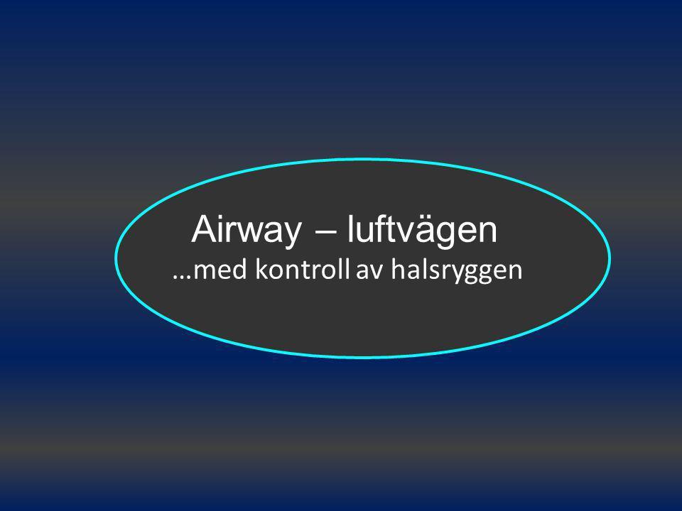 Airway – luftvägen