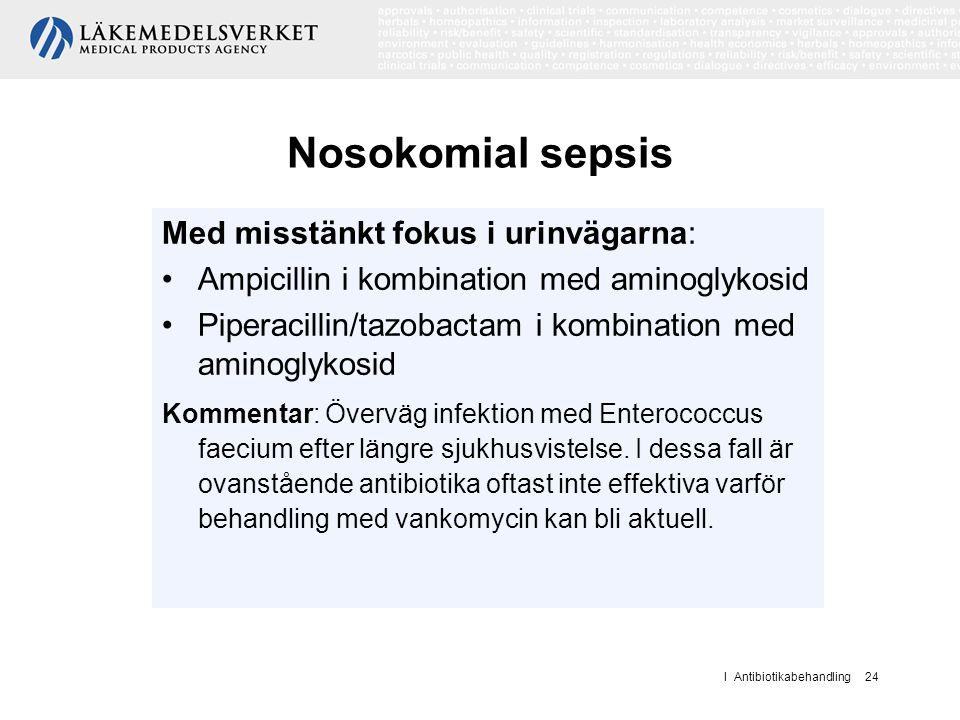 I Antibiotikabehandling 24 Nosokomial sepsis Med misstänkt fokus i urinvägarna: Ampicillin i kombination med aminoglykosid Piperacillin/tazobactam i k