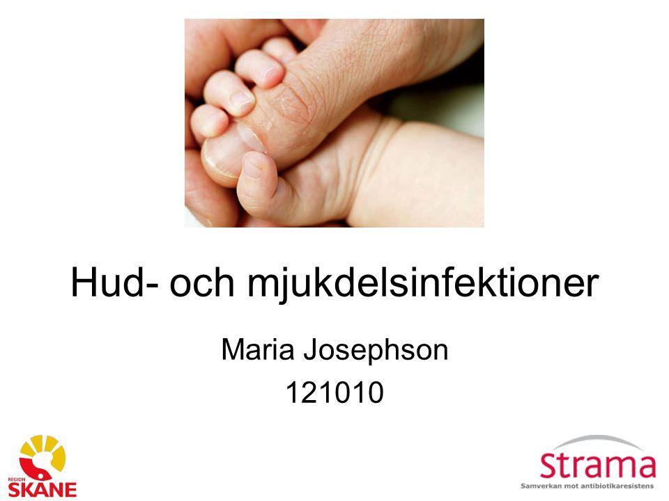 Hud- och mjukdelsinfektioner Maria Josephson 121010