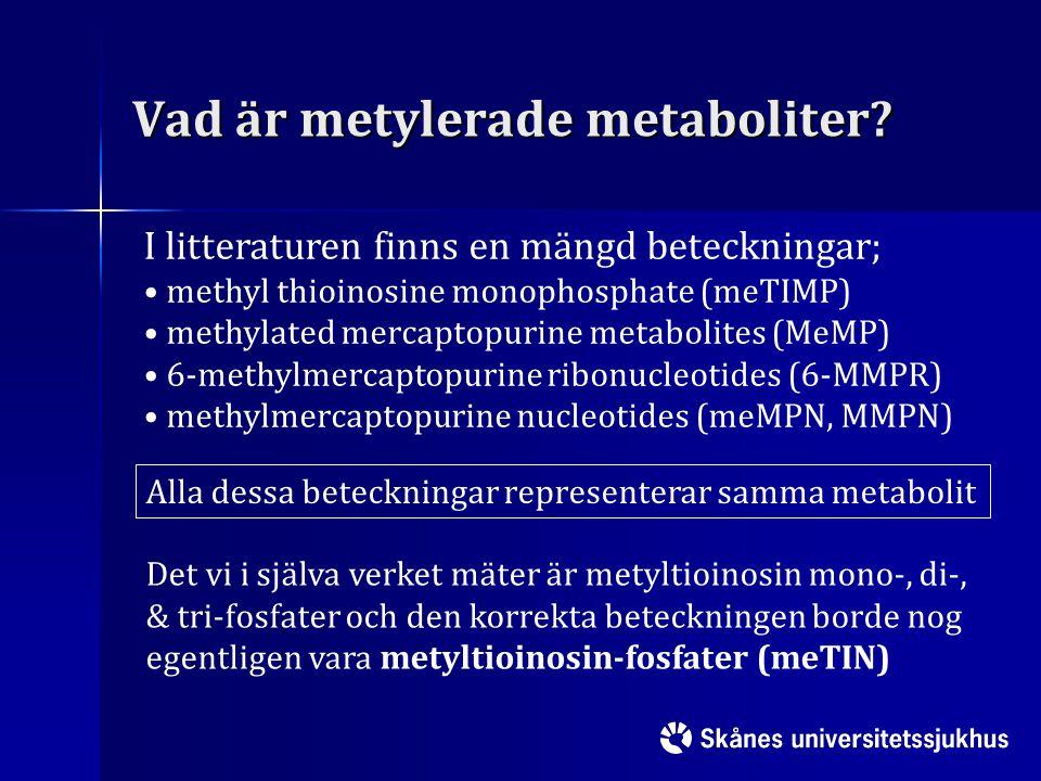 Vad är metylerade metaboliter? I litteraturen finns en mängd beteckningar; methyl thioinosine monophosphate (meTIMP) methylated mercaptopurine metabol