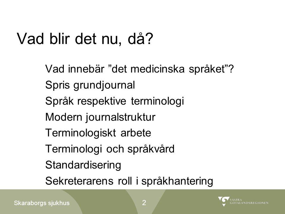 """Skaraborgs sjukhus Vad blir det nu, då? Vad innebär """"det medicinska språket""""? Spris grundjournal Språk respektive terminologi Modern journalstruktur T"""