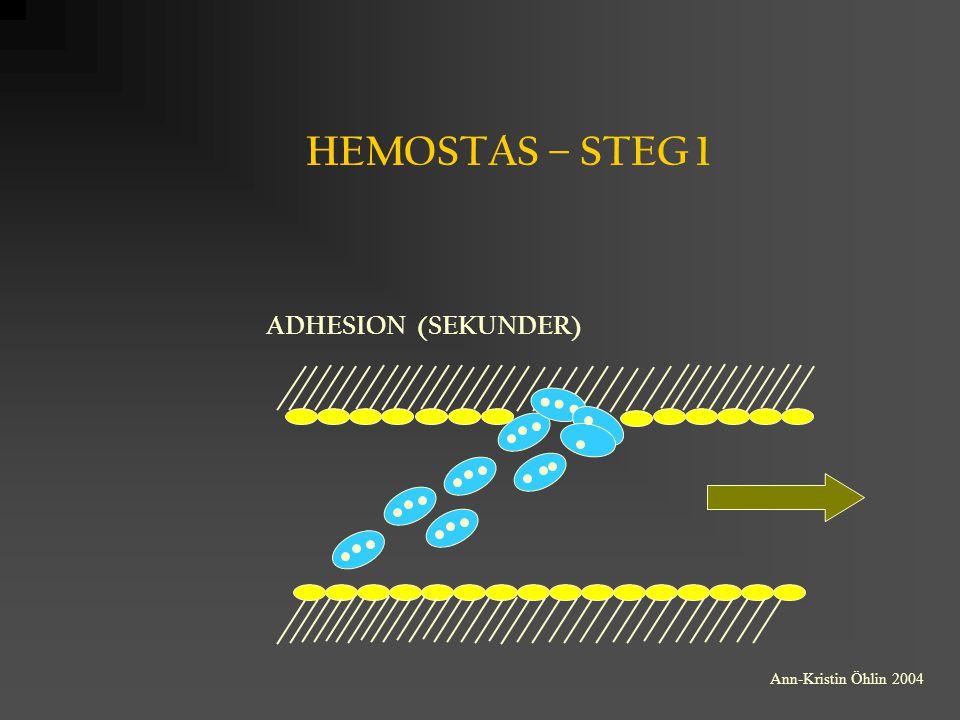 ADPase Trombomodulin ENDOTELCELLENS BIOLOGISKA AKTIVITET UNDER FYSIOLOGISKA FÖRHÅLLANDEN ENDOTEL- CELL HEPARAN Antitrombin Prostacyklin EDRF Plasminogen Plasminogen- aktivator Trombin aktivt Protein C Protein C Hämmar trombocytaggregationen Vasodilatation Fibrinolys ENDOTEL- CELL Proteashämning Ann-Kristin Öhlin 2004