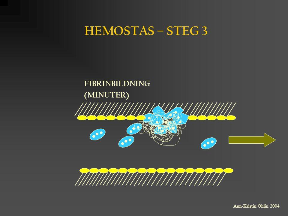 HEMOSTAS – STEG 3 FIBRINBILDNING (MINUTER) Ann-Kristin Öhlin 2004