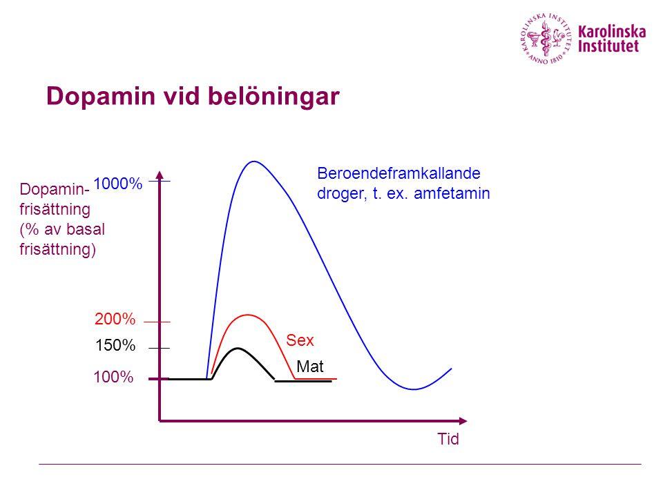 Dopamin vid belöningar Tid Dopamin- frisättning (% av basal frisättning) 100% 1000% Beroendeframkallande droger, t. ex. amfetamin 200% Sex 150% Mat