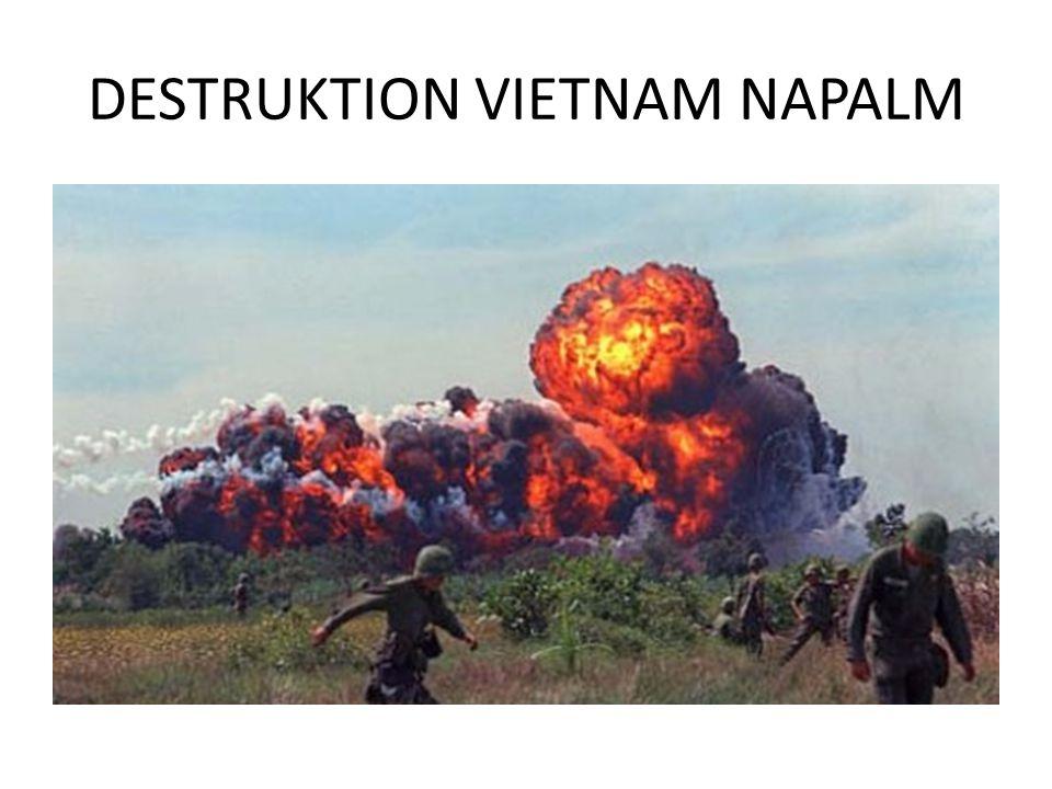 DESTRUKTION VIETNAM NAPALM