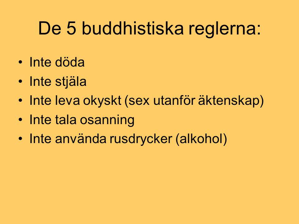 De 5 buddhistiska reglerna: Inte döda Inte stjäla Inte leva okyskt (sex utanför äktenskap) Inte tala osanning Inte använda rusdrycker (alkohol)