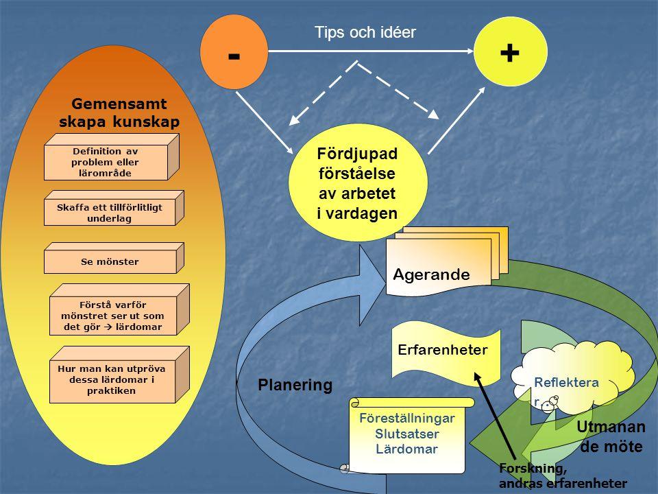 Definition av problem eller lärområde Se mönster Förstå varför mönstret ser ut som det gör  lärdomar Hur man kan utpröva dessa lärdomar i praktiken S