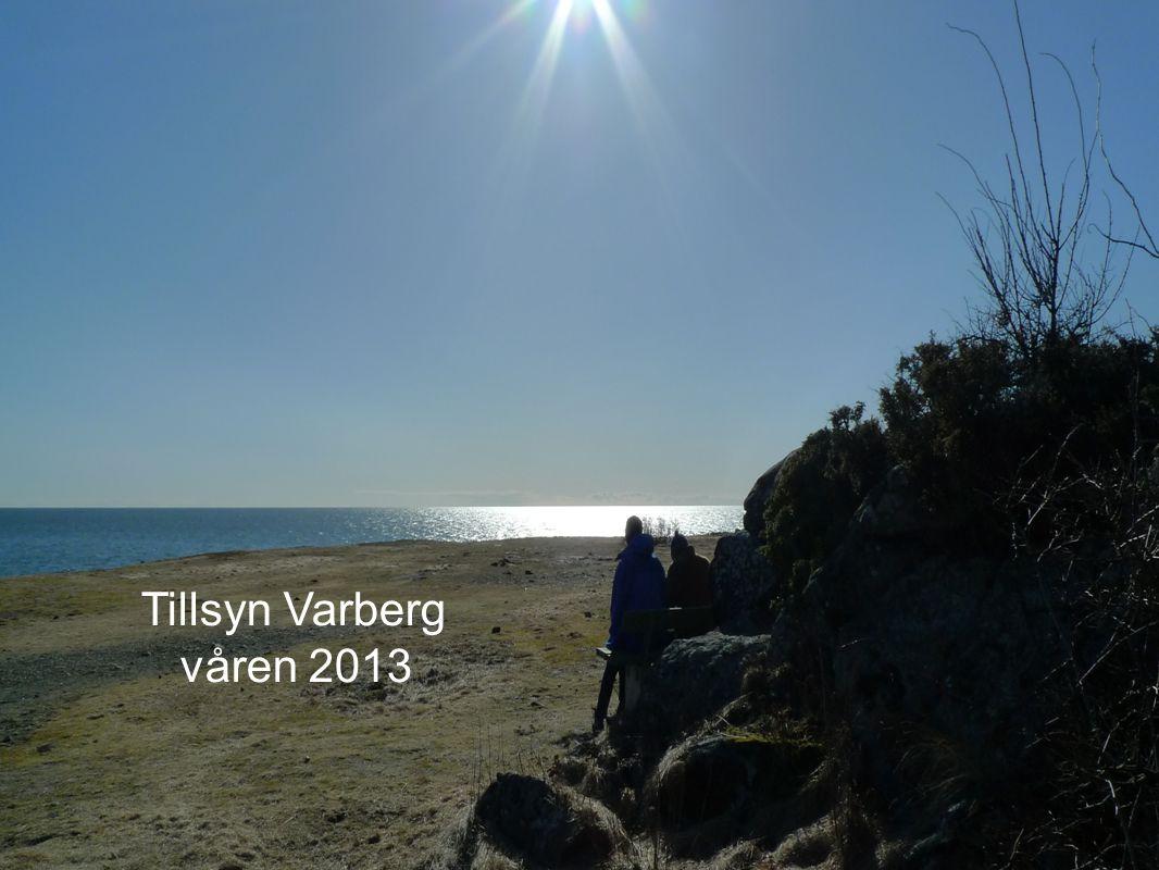 Bra tillsyn – bättre skola Skolinspektionen.se Facebook.com ( OK skola, Skolinspektionen tittar på) Twitter.com ( Skolinspektion) www.skolinspektionen.se