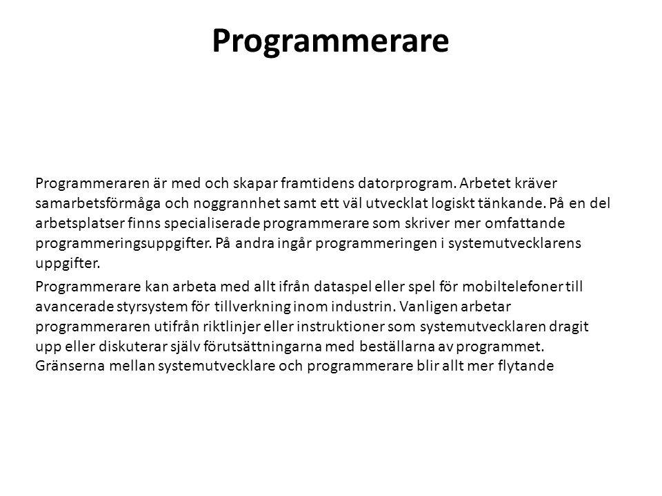Programmerare Programmeraren är med och skapar framtidens datorprogram. Arbetet kräver samarbetsförmåga och noggrannhet samt ett väl utvecklat logiskt