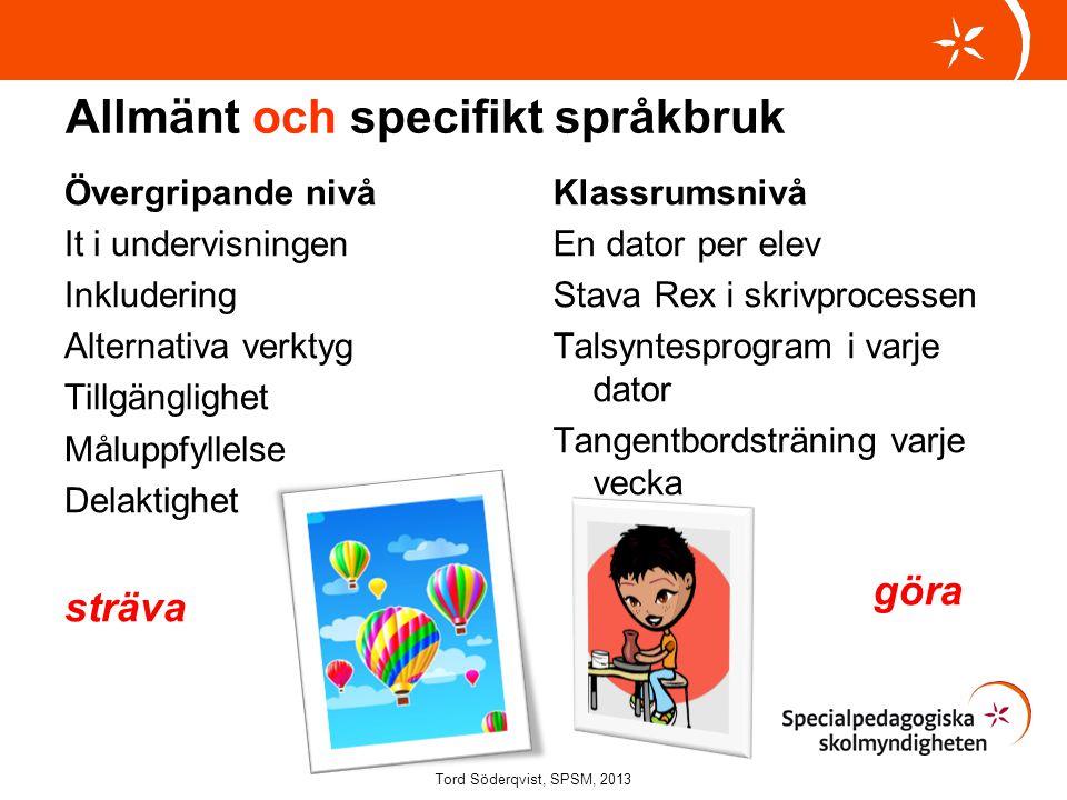 Allmänt och specifikt språkbruk Övergripande nivå It i undervisningen Inkludering Alternativa verktyg Tillgänglighet Måluppfyllelse Delaktighet sträva