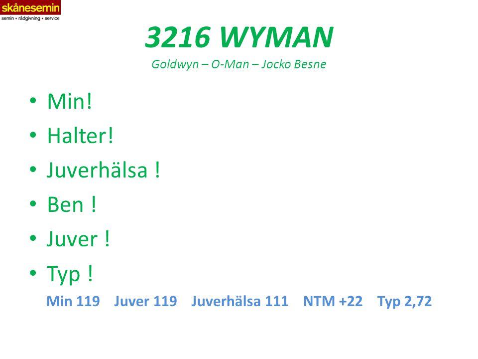 3216 WYMAN Goldwyn – O-Man – Jocko Besne Min. Halter.