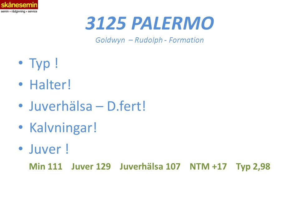 3125 PALERMO Goldwyn – Rudolph - Formation Typ . Halter.