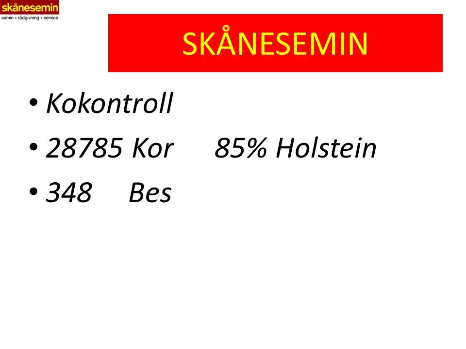 SKÅNESEMIN Kokontroll 28785 Kor85% Holstein 348 Bes