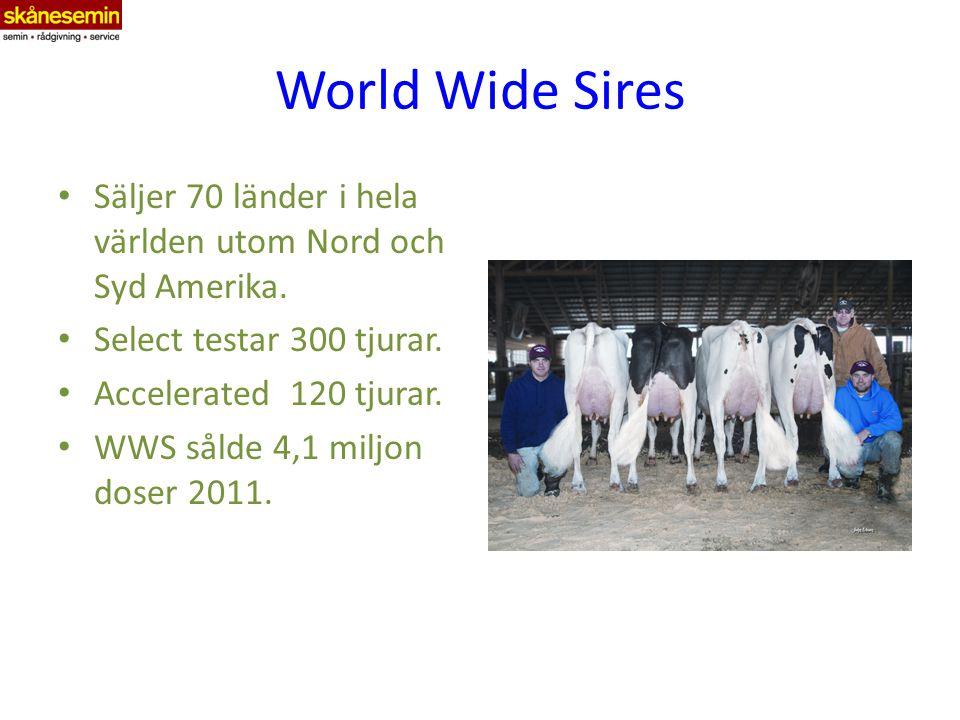 World Wide Sires Säljer 70 länder i hela världen utom Nord och Syd Amerika.