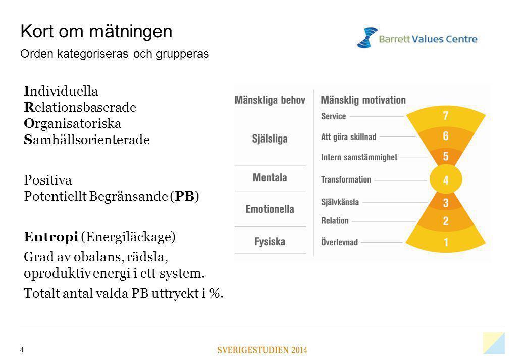 Kort om mätningen Individuella Relationsbaserade Organisatoriska Samhällsorienterade Positiva Potentiellt Begränsande (PB) Entropi (Energiläckage) Gra