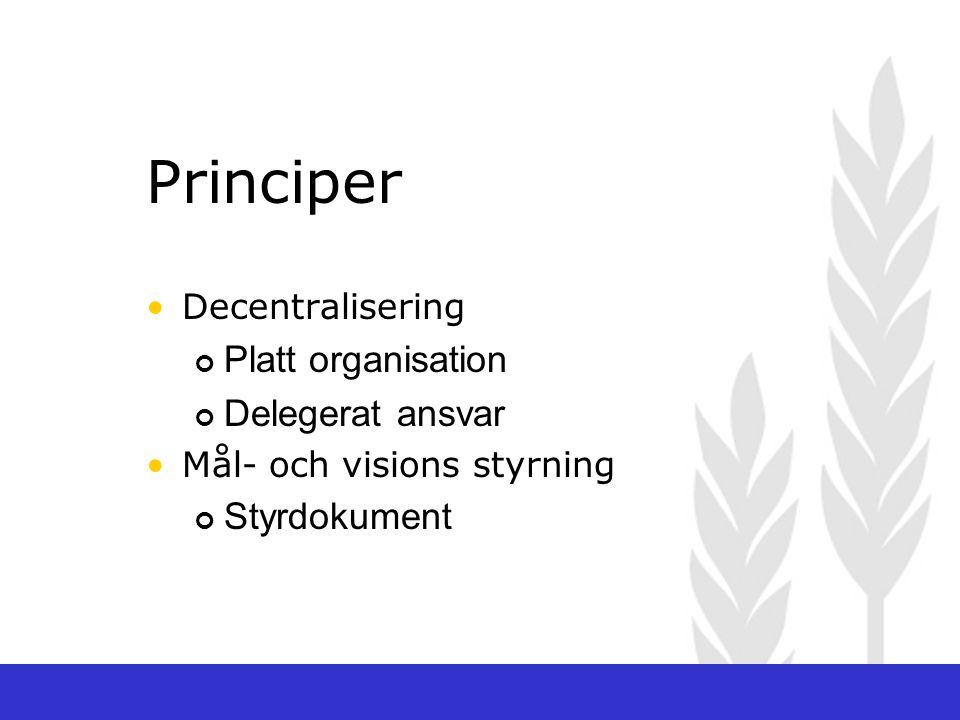 Decentralisering Platt organisation Delegerat ansvar Mål- och visions styrning Styrdokument Principer