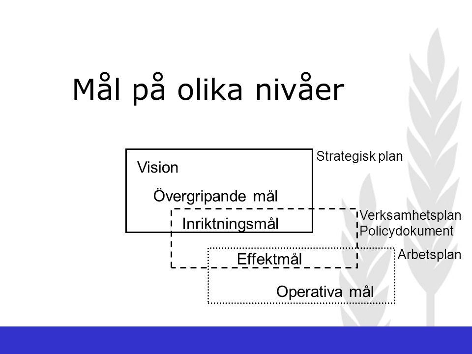 Strategisk plan Vision Övergripande mål Inriktningsmål Verksamhetsplan Policydokument Effektmål Arbetsplan Operativa mål Mål på olika nivåer